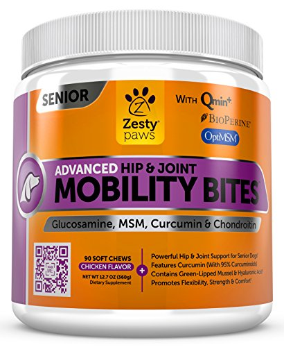 Can Dogs Have Glucosamine Sulfate